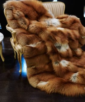 Manta-alfombra de piel de Zorro Reversible