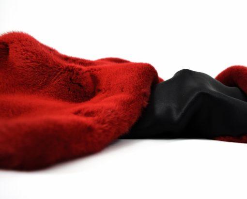 vison rojo 2