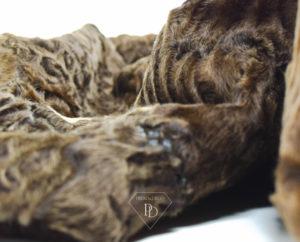 arreglos de abrigos de piel Piel de Astracán Swakara