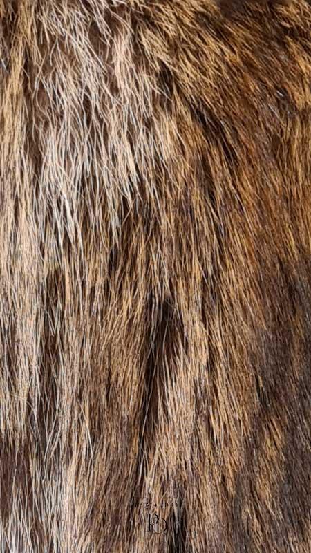 arreglo abrigo marmota juvenil 4 2